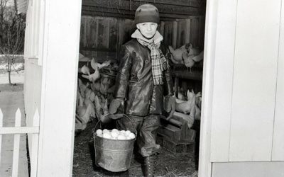 Wilfred Rotter in the doorway of a chicken coop with a pail full of eggs (ca. 1940) Courtesy of State Historical Society of Iowa, Iowa City