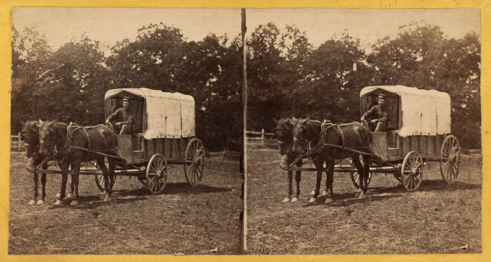 A man poses in an ambulance wagons pulled by horses during the Civil War.