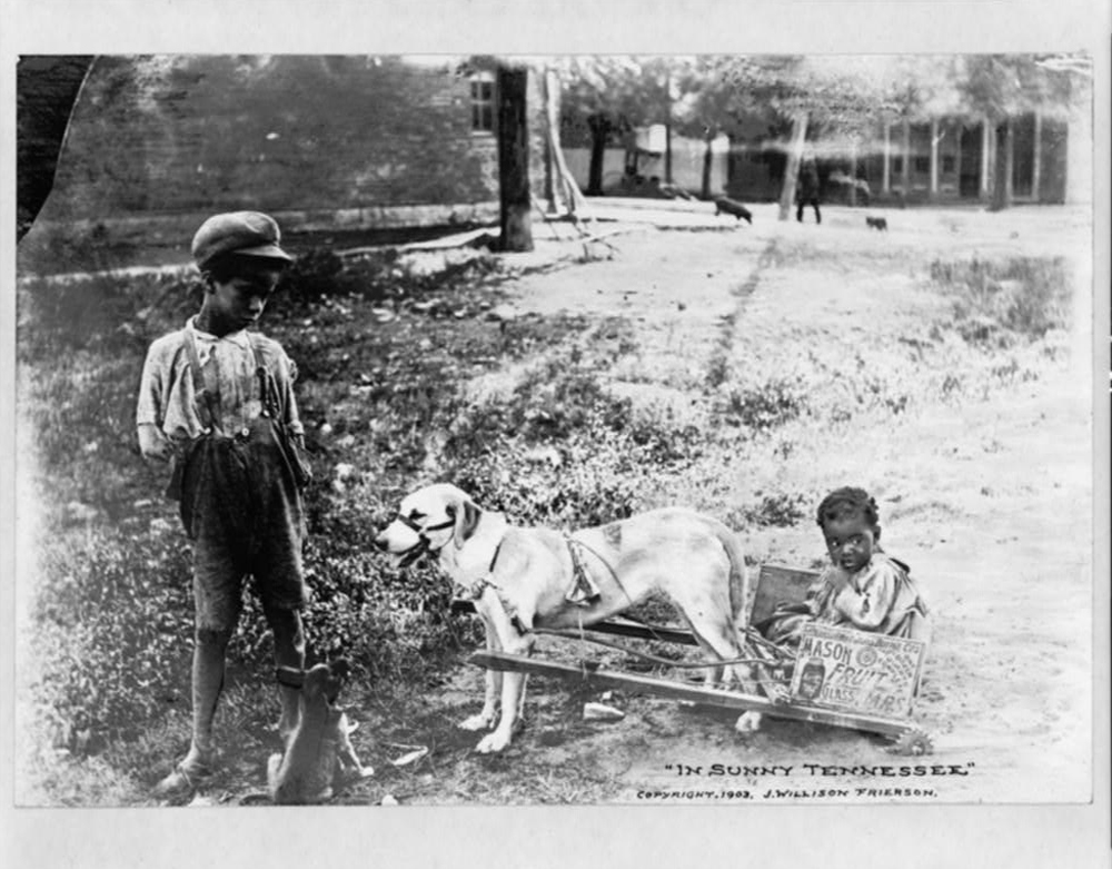 Children Playing with a Dog and Cart in Tennessee, ca. 1903