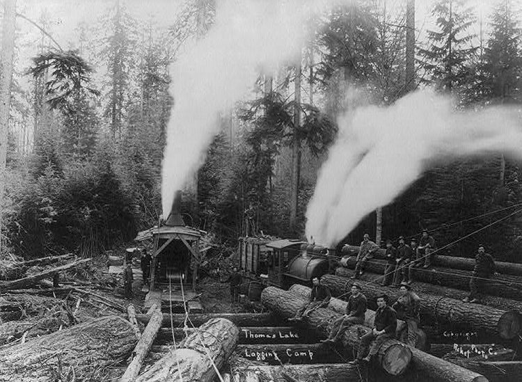 Lumberjacks, logs and steam-powered logging machine & railroad.