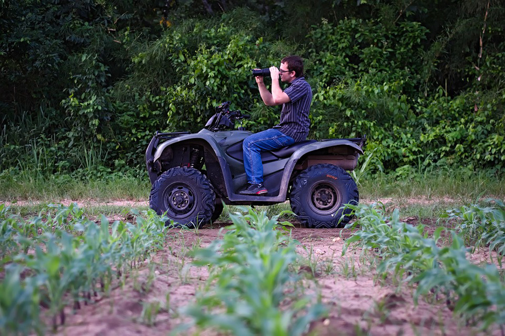Adult man seen riding four-wheeler ATV next to rows of young corn.  Four-wheeler is still and man sits on top of it looking through binoculars.