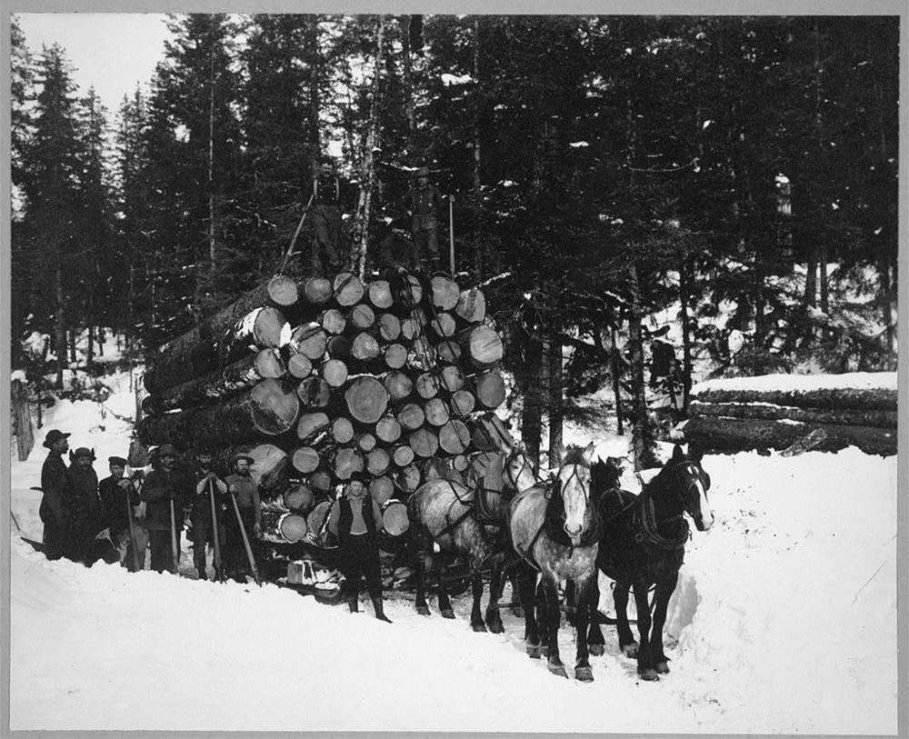 Six-horse team hitched to sleigh loaded with large logs.  Eight men are posed near the sleigh with one of them standing on the top of the logs.
