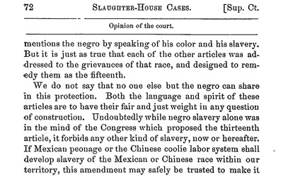 U.S. Supreme Court: Slaughterhouse Cases, 1872