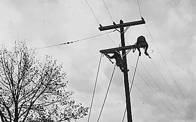Black and white photograph of men putting up power lines for the Tennessee Valley Authority.