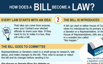 """How a Bill Becomes a Law"" Infographic"
