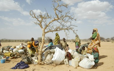 Photograph shows a group of women and children gathered under a leafless tree surrounded by bundles of their possessions.