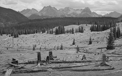 The image shows the results of deforestation for mining in Colorado.  Many trees have been clear cut changing the landscape and forest.