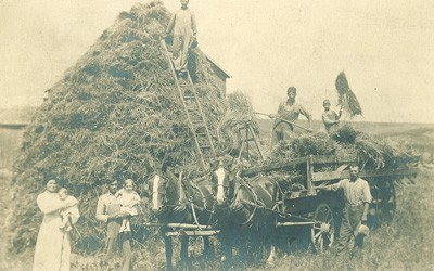 A farm family poses in the foreground of the photograph. Two adults on the left each hold a small child. Two members of the family pose with pitchforks and hay on the wagon. A fifth member of the family poses on a tall ladder leaning against the pile of hay in the background, and a sixth family member stands next to the wagon. A matched pair of horses are harnessed to the wagon.