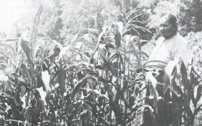 """Corn Shelling with the Mesquakies"" in The Goldfinch, 1993"