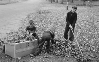 Boy Raking Leaves on a Front Lawn in Bradford, Vermont, October 1939
