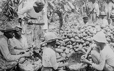 The image shows a group of people in Trinidad that are on the ground with a large pile of cocoa pods.  They are splitting the pods to extract seeds for drying to be eventually turned into cocoa powder.  The image shows the hard work that went into getting cocoa beans from pods for trade to other countries.