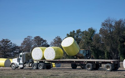 Truck and flatbed trailer with two bales of cotton already loaded on trailer and third bale in process of being loaded by a forklift.
