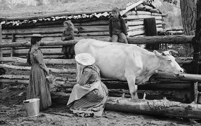 Woman with large straw hat seated on log milking a cow.  Three children of a variety of ages surround the woman and cow.  A log cabin and log fencing are seen in the background, in a mountainous setting.